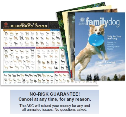 Free American Kennel Club Wall Poster With Subscription!